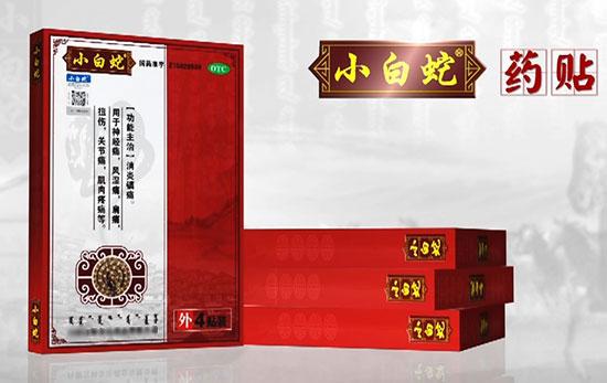 1168医药保健品网-【小白蛇药贴】招商代理彩页
