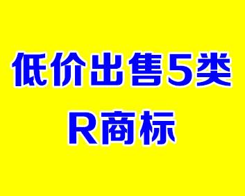 低价出售5类R商标