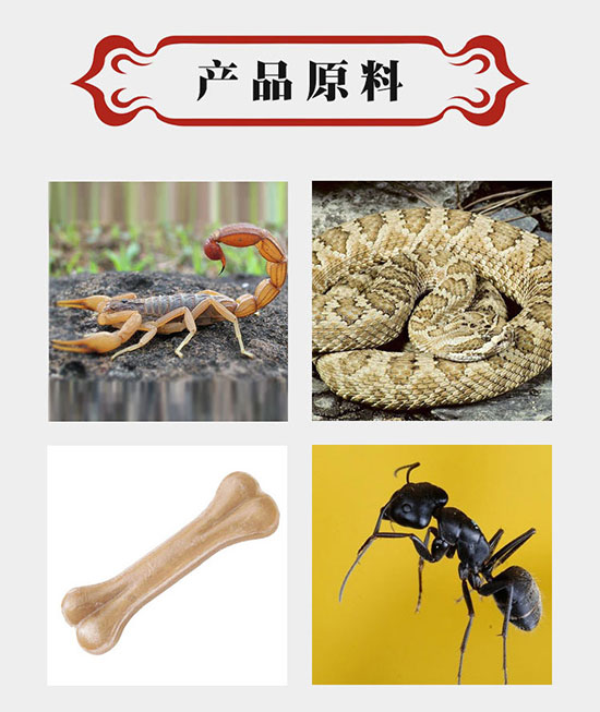 1168医药保健品网-【全蝎蝮蛇片舒筋片】招商代理彩页