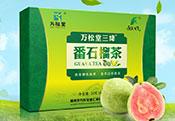 万松堂番石榴茶花草茶袋泡茶OEM厂家