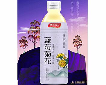蓝莓菊花植物饮料