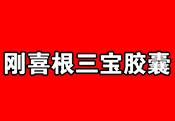 刚喜根三宝雷电竞下载官方版(raybet雷电竞app)