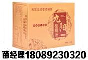 九阳桂精汤